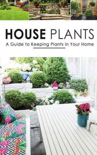 House Plants: A Guide to Keeping Plants in Your Home