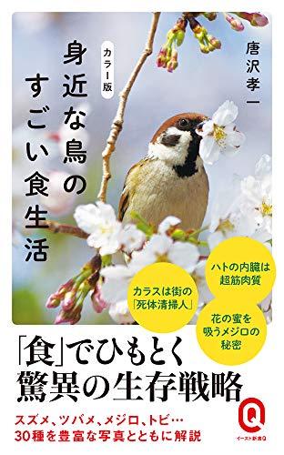 カラー版 身近な鳥のすごい食生活 (イースト新書Q)