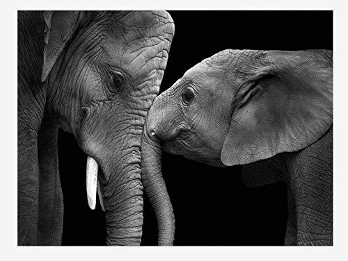 niños IQ Rompecabezas Rompecabezas 70x50cm 3d DIY Dos elefantes en blanco y negro Adultos Juego Creativo 1000 Piezas decoración del hogar