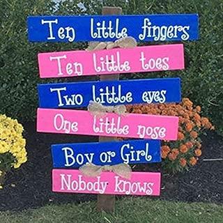 Personalized Gender Reveal Party Ten Little Fingers Ten Little Toes Wood Sign F29