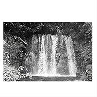 Liwendi 黒と白の森の滝の風景キャンバスポスターとプリント北欧壁画リビングルーム50X70Cm枠なし
