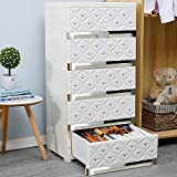 Nafenai 6 Drawers Plastic Storage Drawers Dresser, White Tall Dresser...