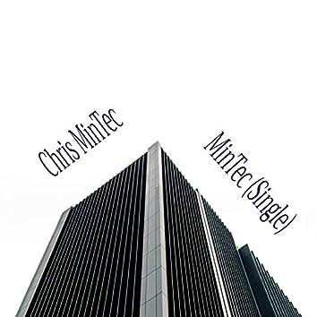 Mintec (Extended Version)