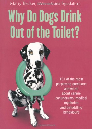 Why Do Dogs Drink Out Of The Toilet? (English Edition)