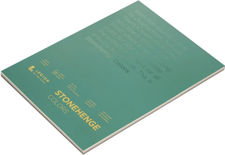 Legion Paper Stonehenge Pad (L21-STP250MC912), Multicolor Paper, 9 by 12 inches, 15 sheets