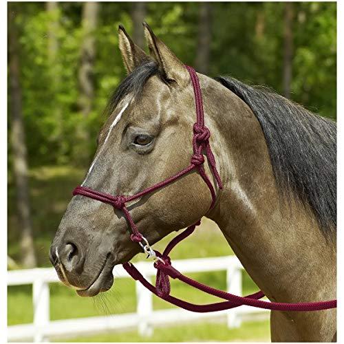 Busse Knotenhalfter RINGE, Pony/Vollblut, bordeaux