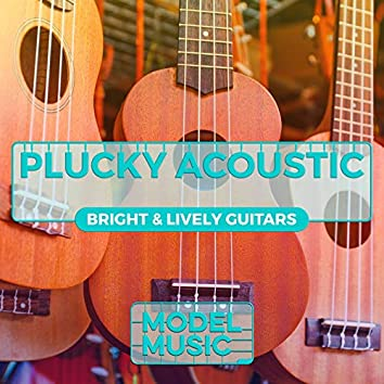 Plucky Acoustic: Bright & Lively Guitars
