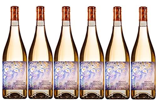 Tenuta Foresta Piemonte DOC Chardonnay 2020 - Pacco da 6x750 ml