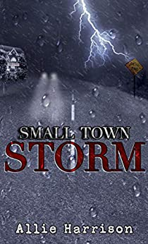 Small Town Storm by [Allie Harrison]