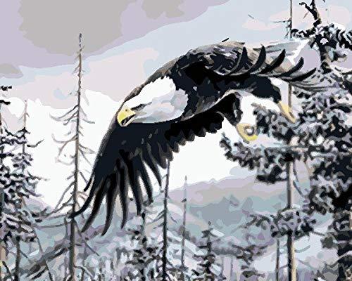 Pintura Al Óleo De Lienzo Diy Águila Del Bosque Para Adultos Niños Diy Kit De Pintura Por Números Sobre Lienzo 16 * 20 Pulgadas.40 * 343Cm