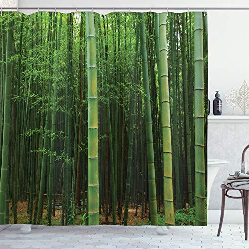 ABAKUHAUS Duschvorhang, Bild Eines Exotischen Bambus Waldes Klaren Jungle Tropisches Foto Druck Grünen Himmlischen Wald, Wasser & Blickdicht aus Stoff mit 12 Ringen Schimmel Resistent, 175 X 200 cm