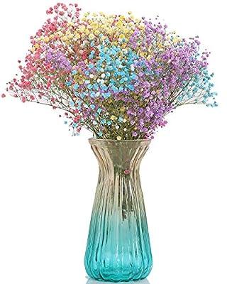 JeremySport Vase,Colorful Ombre Vase,Home Décor Gradient Glass Vase for Flower