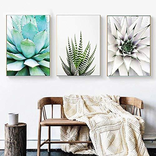 Liangzheng Arte de Pared Moderno impresión suculenta Cactus Pared Lienzo Pintura imprimible Planta impresión decoración Foto Sala de Estar hogar Cartel decoración 50x70cmx3 sin Marco