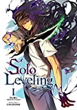 Solo Leveling Vol. 1 (English Edition)