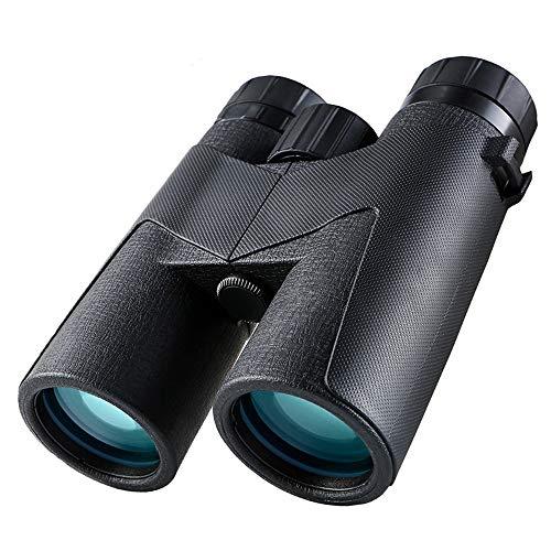 DKEE 10 * 42 Teleskop Fernglas High-Definition-Low-Light-Nachtsicht-Konzert Nehmen Sie EIN Handy-Kamera Weitwinkel Tragbare Outdoor-Reisen Reiten Stickstoff-gefülltes Wasserdichtes Anti-Fog-Teleskop
