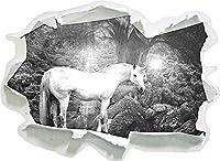 KAIASH ウォールステッカー 素晴らしい馬のアートペーパー3D壁の装飾3D壁ステッカー壁デカール-92x67cm