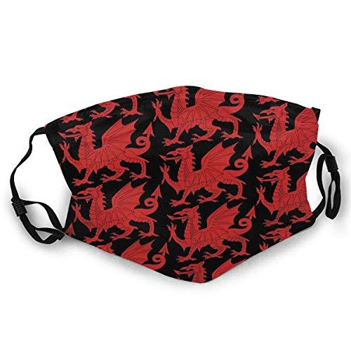 YYTT8 Gesichtsschutz Mundschutz Welsh Red Dragon Socken Staubdichter Sonnenschutzkopfschmuck mit austauschbaren Filtern