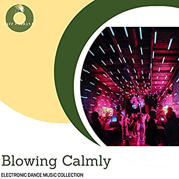 Blowing Calmly - Electronic Dance Music Collection