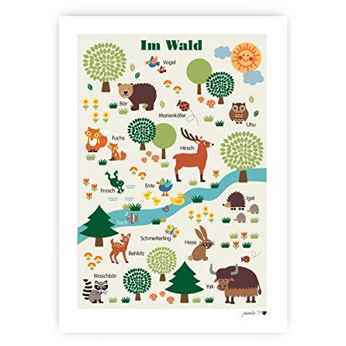byGraziela Poster - Im Wald | Lernposter Deutsch | Waldtiere | Größe 50 x 70cm