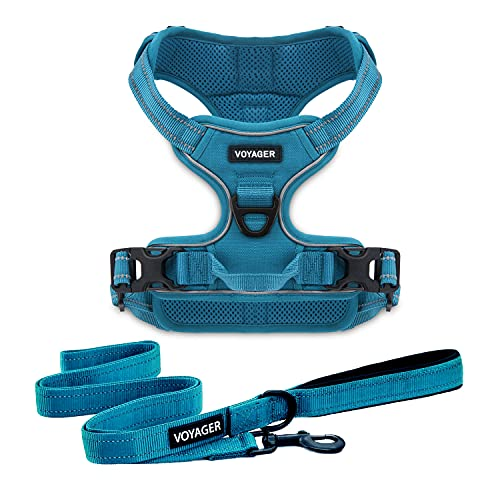 Best Pet Supplies Voyager Dual Attachment Outdoor Dog Harness and Leash Bundle by Best Pet Supplies   NO-Pull Pet Walking Vest Harness - Turquoise, M (Chest: 22 - 27') (211CB-TQW-M)