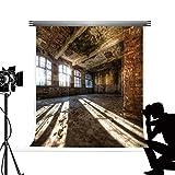 Kate Casa Spezzata Fondale Fotografico 2x3m Marrone Fondale Fotografico Professionale Vero Senso di Spazio Fondali Fotografici Grandi Panno Decorativo