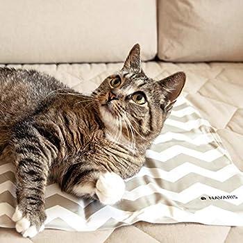 Navaris Matelas Rafraîchissant Chien Chat 50 x 90 cm - Tapis Refroidissant Animaux avec Gel - Coussin Confort pour Chiens et Chats - Matelas Pliable