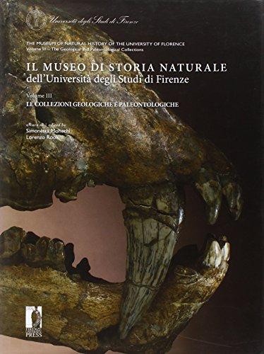 Il museo di storia naturale dell'Università degli studi di Firenze. Le collezioni geologiche e paleontologiche. Ediz. italiana e inglese