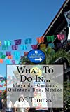 What To Do In...Playa Del Carmen, Quintana Roo, Mexico (English Edition)