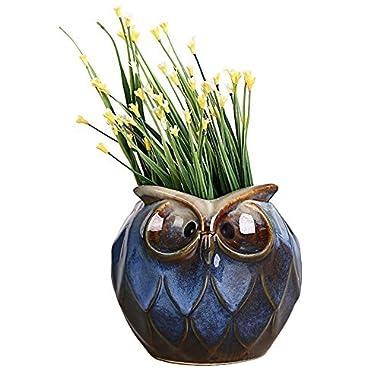 GeLive Blue Owl Ceramic Succulent Planter Animal Plant Pot Tabletop Decoration Vase Window Box