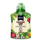 Abonos - Fertilizante Guano Botella 400ml - Batlle