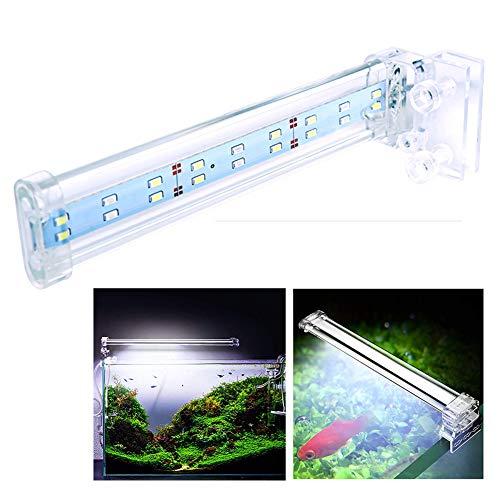 WYRX Luz de Acuario Clip de Cristal Luz LED Luz acuática Tanque de Tortuga Luces de Tira Luz Natural (Varias especificaciones)