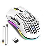 WREWING Leichtesgewicht Spielmaus, Design des Honignests Rechargeable Wireless Game Maus mit USB-Empfänger, RGB Hintergrundbeleuchtung Computer-Maus für Laptop PC Geeignet(Weiß)