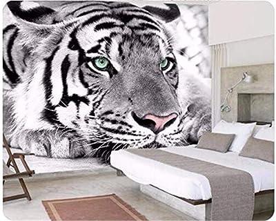 ❤PAPEL PINTADO FOTOGRÁFICO: 350 x 256cm - 7 tiras, impresión impermeable en calidad Full HD, IDEAL para cada apartamento, dependiendo del motivo del papel pintado se obtiene un gran efecto 3D. Usamos los mejores materiales para producir el mejor pape...