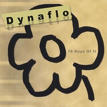 16 Days of It