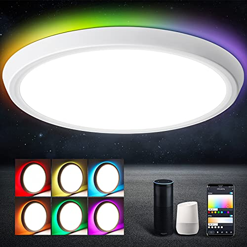 Smart Ceiling Light Fixture, Oeegoo Slim LED Flush Mount Light Fixture Dimmable, 12 Inch 35W Low Profile WiFi RGB Ceiling Lights, Compatible with Alexa Google Home, for Bedroom Living Room Lighting