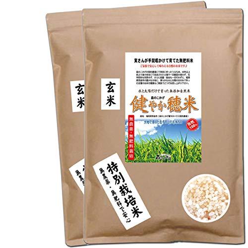 森のこかげ 健やか穂米 2kg (玄米 1kg×2個セット) 無農薬 無肥料米