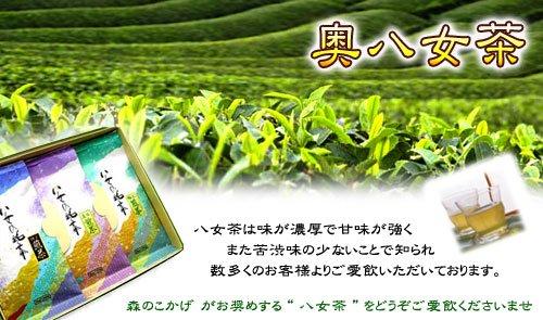 森のこかげ健やかハウス『八女の水出し緑茶6g×15P』