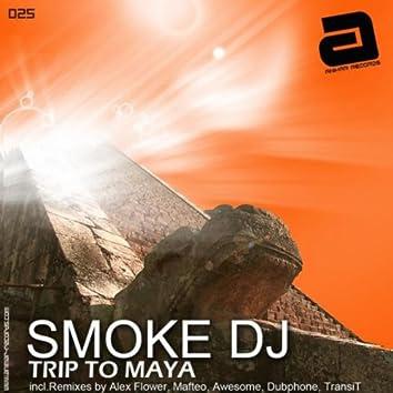 Trip to Maya