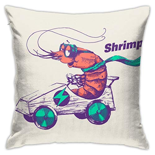 iksrgfvb Pillowcases Cushion Covers decoration Bark Hipster Shrimp Is Riding An Electric Go Cart Vector Illustration on the Sofa car bed 45X45 CM