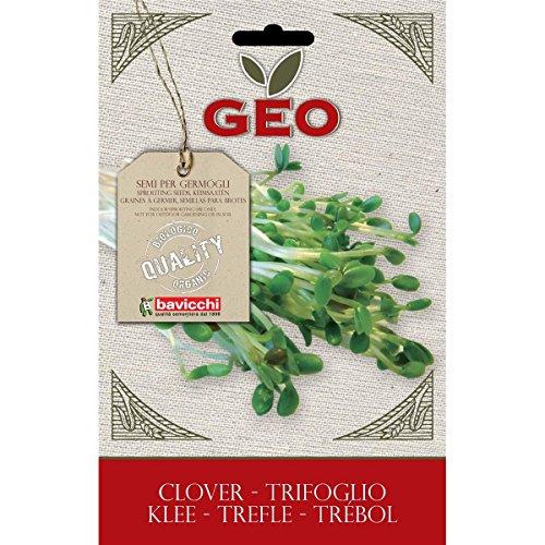 Geo Trifoglio Semi da Germoglio, Marrone, 12.7x0.7x20 cm