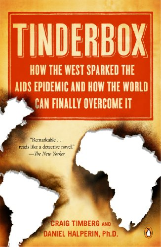 Download Tinderbox: How the West Sparked the AIDS Epidemic and How the World Can Finally Overcome It 0143123009