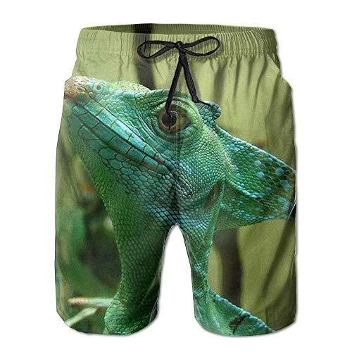 UK Short de bain pour homme Motif lézards Vert Taille XL - Multicolore - L