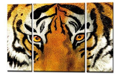 kunst-discounter Quadro su tela 3immagini Tiger Telaio posteriore 130cm larghezza 80cm altezza Fix & già montato su telaio finiti. MADE IN GERMANY. artnr. c00721N opere d' arte
