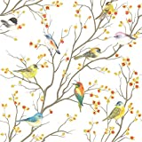 dktie Privacy Window Film, Decorative Bird Window Clings Vinyl, Non-Adhesive Frosted Window Decals for Glass Room Décor Anti UV Home Office Bathroom Kids Study Room