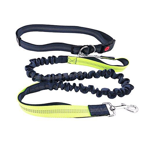 QitinDasen Premium Hände Frei Hundeleinen Kit, Verstellbarem Hüftgurt und Dehnbare Leine, Jogging Hundeleine mit Reflektoren, für Große, Mittlere, Kleine Hunde und Katzen (Grün + Grau)