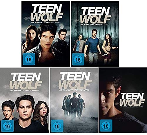 Staffel 1-5 (26 DVDs)