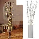 Branches lumineuses avec 80 LED argentées, décoration lumineuse