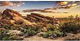 AWERT Reptile Habitat Background Blue Sky Oasis Cactus Sun and Desert Terrarium Background 36x18 inches Durable Polyester Background