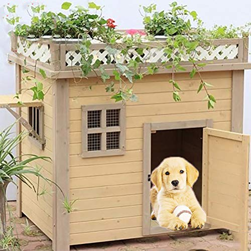 Zhyaj Wetterfes Hundehaus Für Grobe Hunde Holz Schäferhund Hundehütte Atmungsaktiv Isoliert Hundezwinger,Gelb,XL