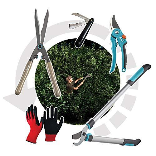 Mike Gardena - Juego de herramientas de jardín para podar – con tijeras para setos, podadora, tijeras, cuchillo de doble hoja y guantes